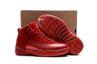 Authentic Air Jordan 12 Retro-102